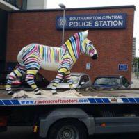 Zebra Return