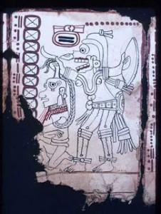 Maya codex page